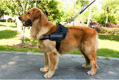 Tactical Dog Excursion K9 Training Patrol Vest Harness, XS/S/M/L/XL/XXL 3