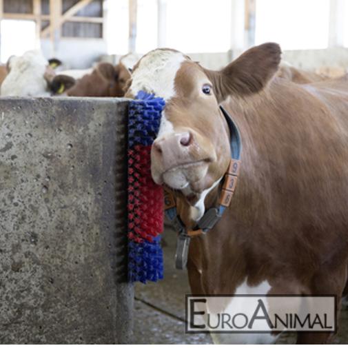 Viehbürste Texas Kuhputzmaschine Kratzbürste Kuhbürste Pferdebürste Rinderbürste