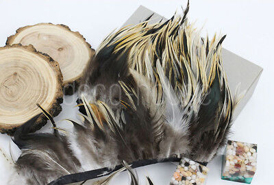 Rooster Rare Feathers Coque Fringe Craft Trim Sewing Costume Millinery Collar 12