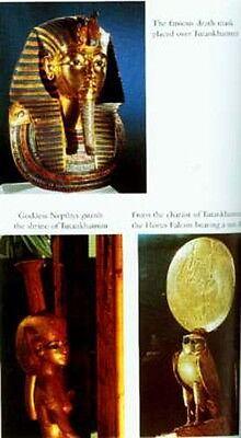 Tutankhamen Mysterious Death Murder Amarna Father-in-Law Ay? Wife Ankhesenamun? 5