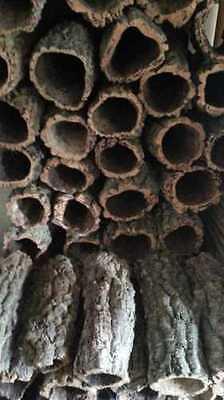 Kork Röhre: Natur Kork, Kork Rinde, Nager | gereinigt | 60 cm lang, ⌀= 15-20 cm 2