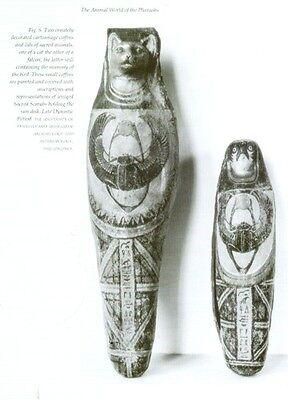 Ancient Egypt Animals Gods Pets Livestock Wild Fish Birds Insects Serpents PIX 3