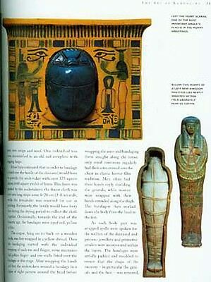 """NEW """"The Mummy"""" Pets Sacred Animals Evisceration CAT Scans DNA Pharaohs 139 Pix 4"""
