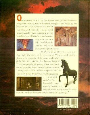 Ancient Rome Herculaneum Pompeii Mount Vesuvius Buried Intact Treasure 79AD Pix 2