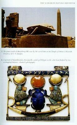 RARE NEW Shire Ancient Egyptian Scarabs Types Mythology Religion Exports Khepri 3