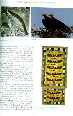 Birds in Ancient Egypt As Mummies, Deities, for Food Art Amulets 40 Artifacts 7