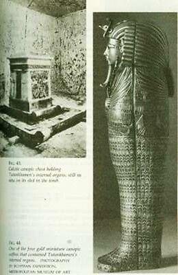 NEW Egyptian Mummies Ancient Art Secrets Mysteries Myths Rituals Xrays CAT Scans 4