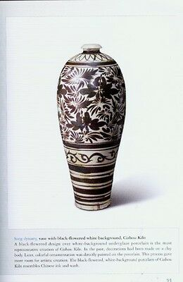 NEW Chinese Ceramics Kiln Primitive Han Tang Sui Jin Song Mongol Yuan Ming COLOR 8