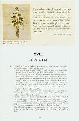 Vinum History of Roman Wine via Archeology Literature Banquets Taverns Shipwreck 8