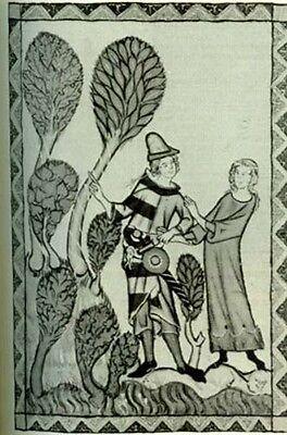NEW RARE Medieval Womens Life 12-13thC English Flemish Ancient Illuminations Art 3