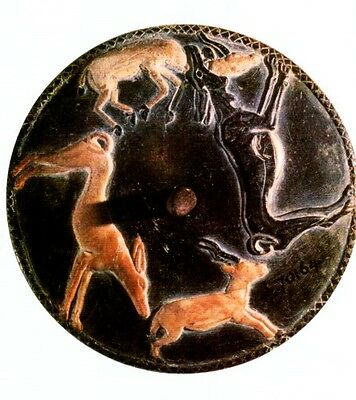 Ancient Egypt Animals Gods Pets Livestock Wild Fish Birds Insects Serpents PIX 5