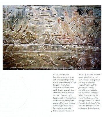 Ancient Egypt Animals Gods Pets Livestock Wild Fish Birds Insects Serpents PIX 6