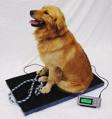 Animal Weighing Scale 180kg x 0.05kg LCVS180 Veterinary Dog Greyhound Livestock 2