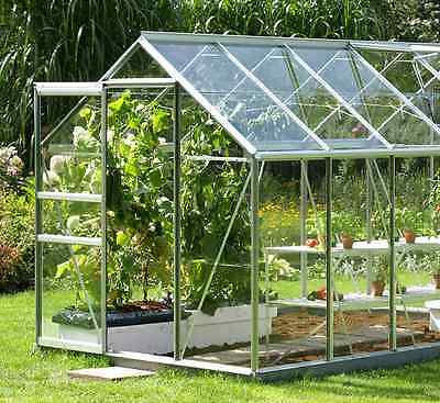 CLEAR Acrylic & Polycarbonate Shed Greenhouse Windows Plastic Sheet Perspex 4