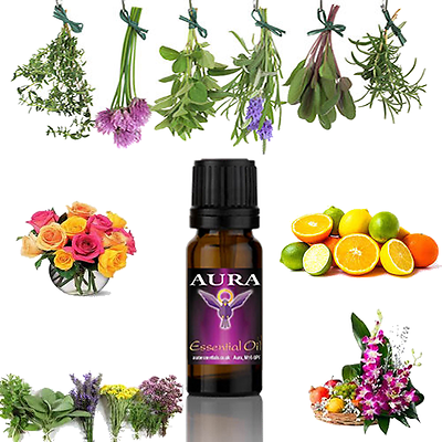 Essential Oils Natural Pure Oil Fragrances For Aromatherapy Diffuser Burner 10ml 5