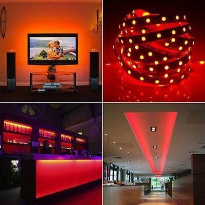Wholesale LED Roll Strip Light 12V 3528 5050 5M/10M/15M/20M RGB SMD Waterproof 8