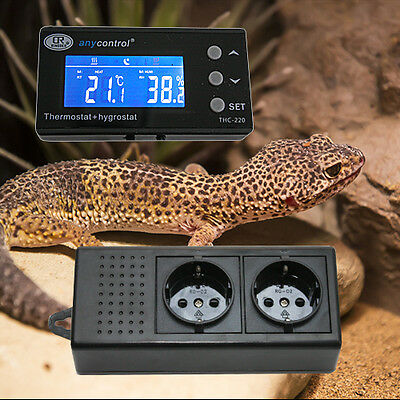 2-In-1 Thermostat/hygrostat Tag/nacht Digital Terrarium *display Extern* Txh