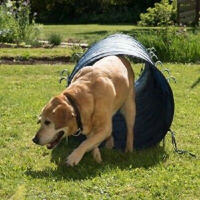 Dog Agility Tunnel Activity 60 cm x 5m Blue Fit & Healthy Strong and Sturdy 4