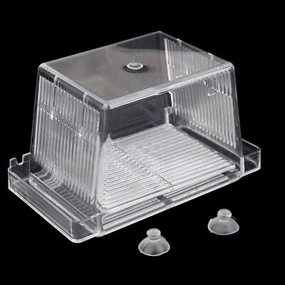 Hot Aquarium Fish Tank Guppy Double Breeding Breeder Rearing Trap Box Hatchery 9