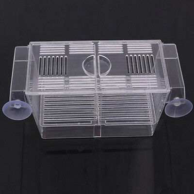 Hot Aquarium Fish Tank Guppy Double Breeding Breeder Rearing Trap Box Hatchery 4
