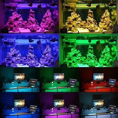 Wholesale LED Roll Strip Light 12V 3528 5050 5M/10M/15M/20M RGB SMD Waterproof 9