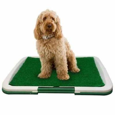 PET Dog Toilet Mat Indoor Restroom Training Grass Potty Pad Loo Tray Large Puppy 2