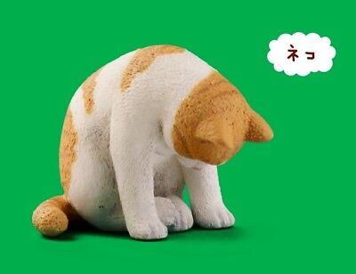 Takara Tomy Panda/'s ana Zoo Zzz Sleeping Animal Collection P6 Neko Cat Figure