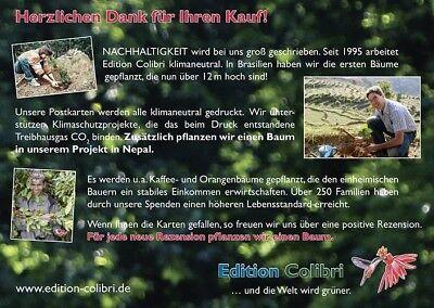 4 Von 5 Einladungskarten Kindergeburtstag Im Kletterpark / Hochseilgarten  Im Wald