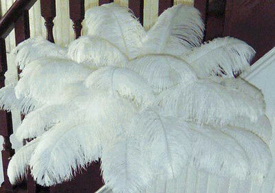 1 Of 12free Shipping New Whole 10 Pcs Natural Ostrich Feathers For Wedding Prom Centerpiece