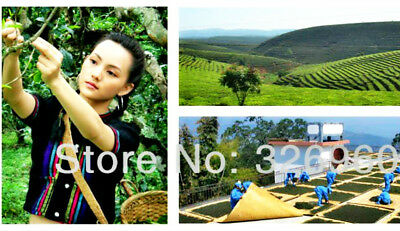 100g Mûr Pu-erh Thé Tuocha Premium Yunnan Thé Pu-erh Vieux Thé Arbre Matériaux 茶 7