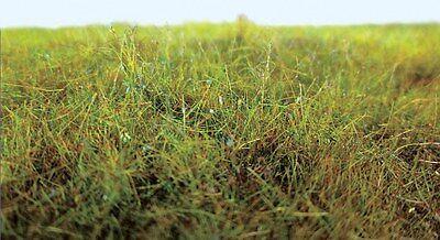 4mm Spring Grass 20G MODELRRSUPPLY $5 Offer PECO Scene PSG-401 Static Grass