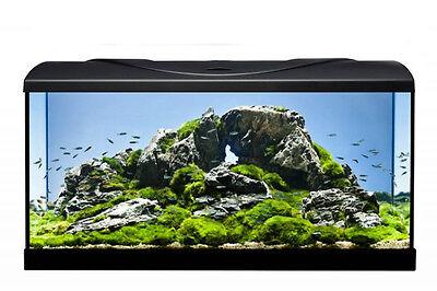 Aquarium Set Diversa-StartUp-LED Set- 50 cm komplett  Einsteiger Set Glasbecken 2