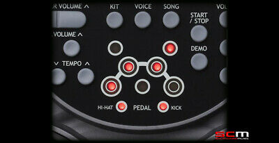 Ashton EDP450 Electronic Digital Drum Pads Bass Drum & Hi Hat Pedals 3