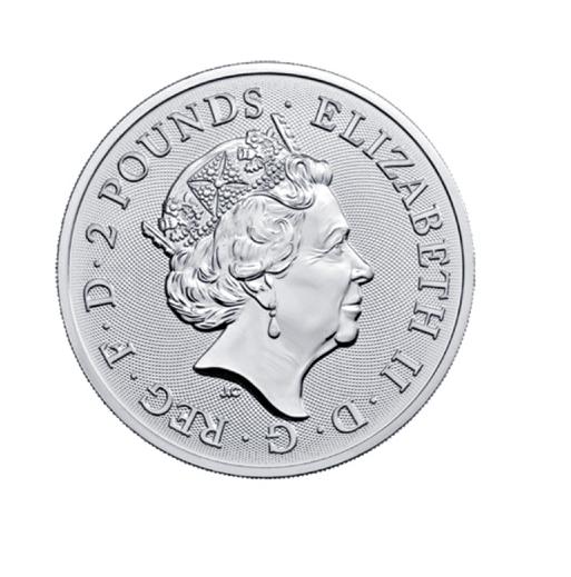 Lunar Jahr des Schwein Pig Year of Pig 2019 1 OZ Silber Silver Großbritannien