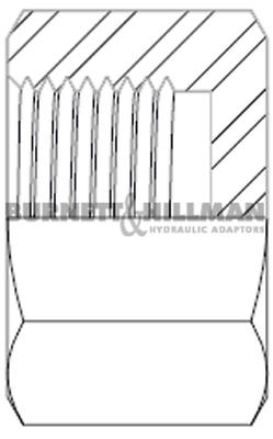 Burnett & Hillman BSP Fixed Female Solid Cap Hydraulic Fitting 2