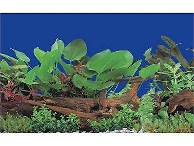 poster fond d aquarium decors  plantes double face 40cm x40cm 3