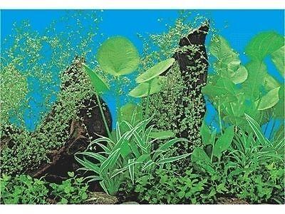 poster fond d aquarium decors  plantes double face 40cm x40cm 2