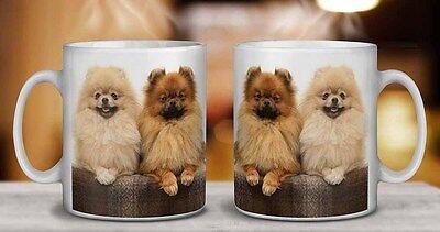 AD-PO95MG Pomeranian Dog Coffee//Tea Mug Christmas Stocking Filler Gift Idea