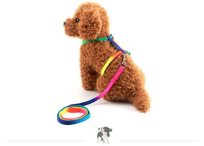 Cat Kitten Puppy Soft Nylon Adjustable Harness Leash with Clip Pet Walking Lead 2