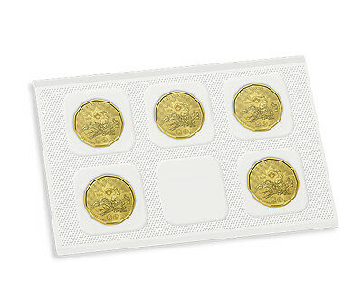 2016 Canada $1 Lucky Loonie 5-pack Olympic Dollar Circulation original Mint pack 5