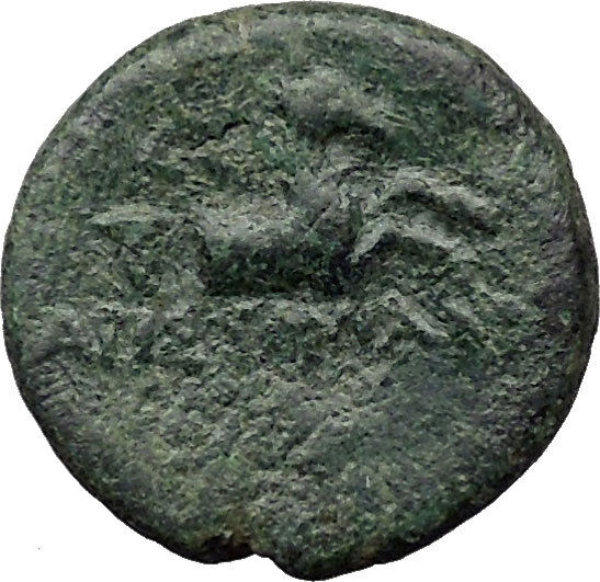 CYME KYME Asia Minor 300BC Ancient Greek Coin Horse Amazon warrior  i31480 2