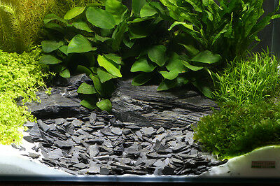 Dennerle Plantahunter Natural Aquascaping Gravel Baikal 10-30mm NEW 5kg 2
