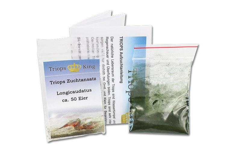 Triops Longicaudatus Tadpole Starter Kit incl. feed, triopseggs and instructions
