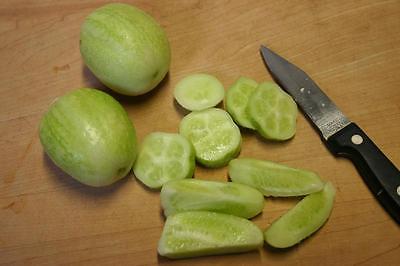 Vegetable Cucumber Crystal Apple - 30 Seeds - Heritage 4