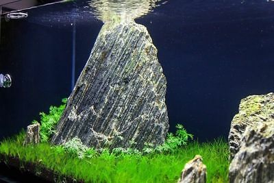 Natural Wood Stone For An Aquarium Aquascaping Iwagumi Style, Nature, Malawi 6