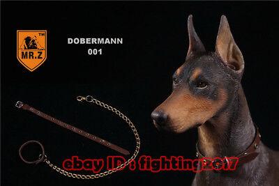 1//6 Mr.Z Pug dog Figure MRZ Animal Model Pug Dogs Collect 001-004