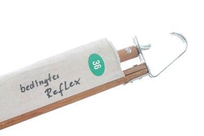 Alte Anatomie Lehrtafel bedingter Reflex Wandkarte Rollkarte Unterricht