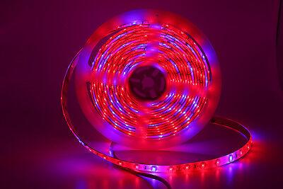 LED Plant Grow Strip Lights 12V 5050/24V 5730 300LEDs/5M Full Spectrum Red&Blue
