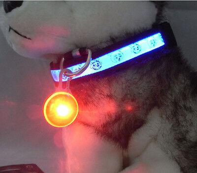 Mini Pet Dog Cat Puppy LED Flashing Collar Safety Night Light Keyring Pendant 3