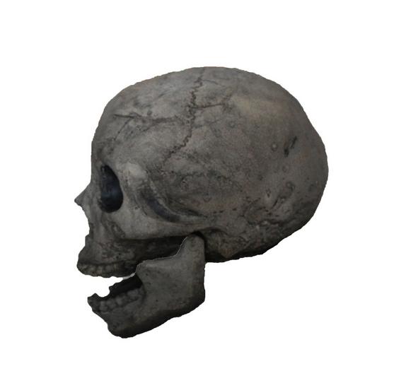 Fire Brick Ceramic Skull Earthen Brown